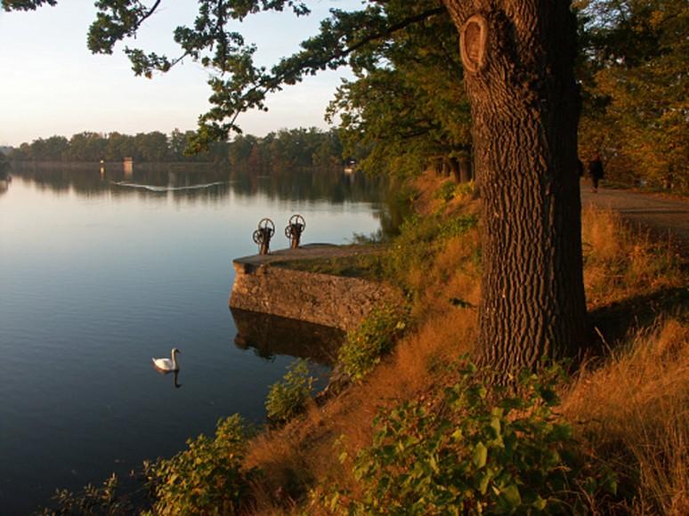 Stavidla na hrázi Rybníka Svět v Třeboni - tam se to randí...