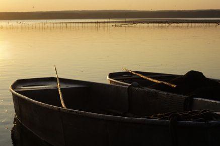 Pramice na třeboňských rybnících